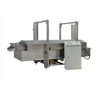Twin screw sala crispy chips fried wheatflour snack processing line/making machine